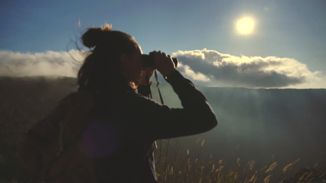 scene of woman using binoculars in the forest , woman travel and using binoculars looking bird in the forest, slow motion - explorer stock videos & royalty-free footage