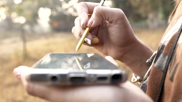 scene of woman using smartphone search website in a forest at morning - electronic organiser stock videos & royalty-free footage