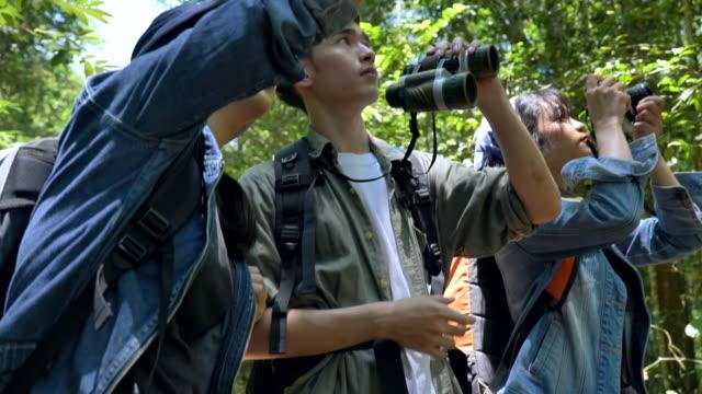 場景慢動作的一群青少年亞洲背包客正在森林中徒步旅行,並在暑假一起享受樂趣。他們很高興,在假期裡玩得很開心,放鬆的時刻。青少年自然日常生活的概念戶外 - 東亞人 個影片檔及 b 捲影像