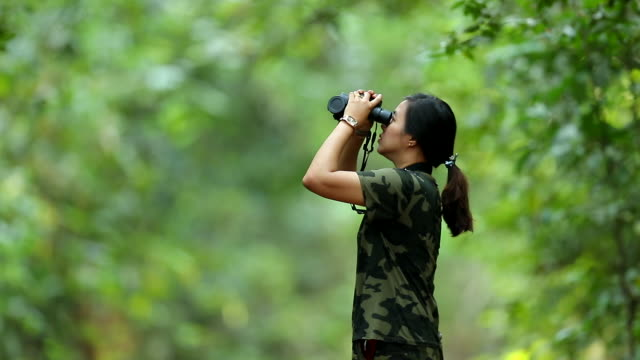 scene slow motion of asian woman using binoculars in the forest , woman travel and using binoculars looking bird in the forest, lifestyle of people outdoor activities - osservare gli uccelli video stock e b–roll