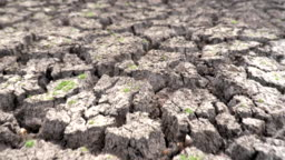 Scene slow motion of dry cracked earth during climate change drought disaster, Global Warming