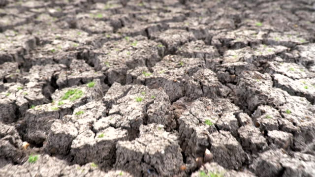 vídeos de stock e filmes b-roll de scene slow motion of dry cracked earth during climate change drought disaster, global warming - solo