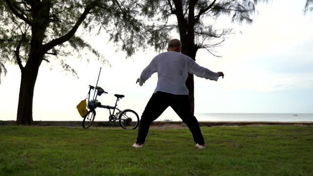 scene slow motion of senior asian man is practicing tai chi in the park at morning, concept healthy and lifestyle, sport - martial arts stock videos & royalty-free footage