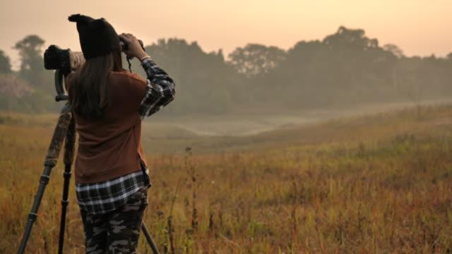 szene zeitlupe der tierfotografie machen ein foto im wald, lebensstil der menschen - entdeckung stock-videos und b-roll-filmmaterial