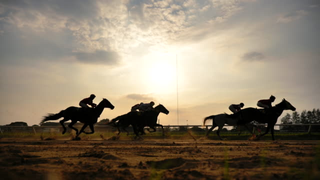 scene slow motion silhouette of horse racing - horse racing stock videos & royalty-free footage