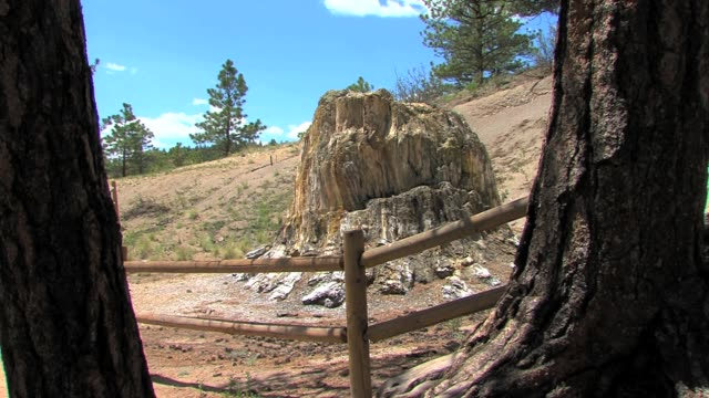scenery in and around florissant fossil beds national monument which is known for its fossilized stumps of redwood trees florissant fossil beds... - herbst stock videos & royalty-free footage