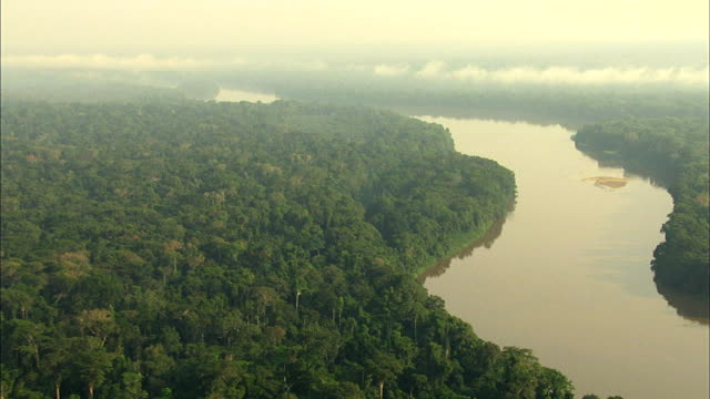 stockvideo's en b-roll-footage met scenery of congo river and congo basin's tropical jungle, africa - tropisch regenwoud