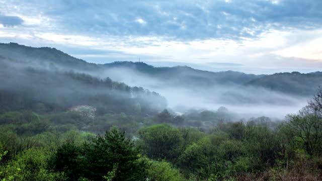 scenery of foggy inje secret garden / inje-gun, gangwon-do, south korea - naturwunder stock-videos und b-roll-filmmaterial