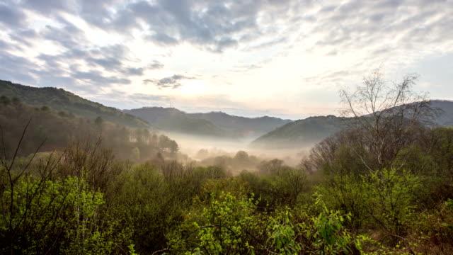 scenery of inje secret garden / inje-gun, gangwon-do, south korea - naturwunder stock-videos und b-roll-filmmaterial