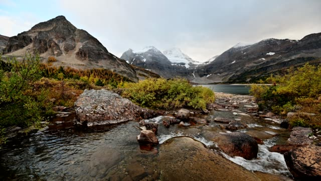 scenery of mount assiniboine with stream flowing in autumn forest at provincial park - mystery stock videos & royalty-free footage
