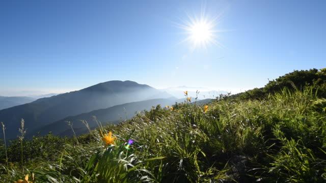 scenery of nogodan peak in jirisan mountain / jeollanam-do, south korea - swaying stock videos & royalty-free footage