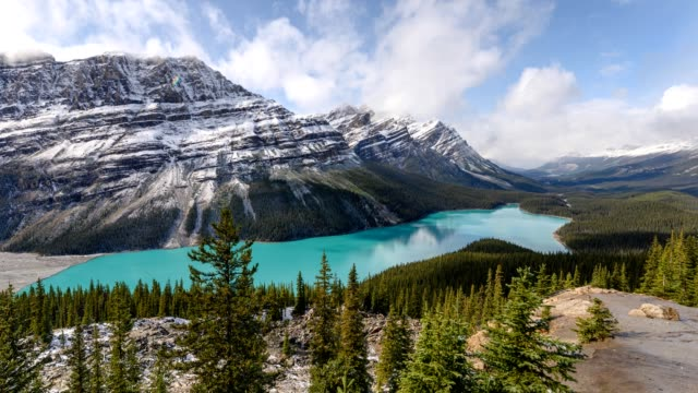 scenery of peyto lake resemble of fox in banff national park at canada - banff national park stock videos & royalty-free footage