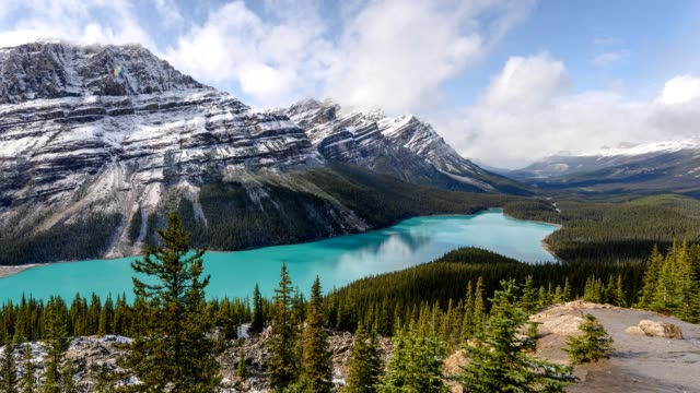 scenery of peyto lake resemble of fox in banff national park at canada - national park stock videos & royalty-free footage