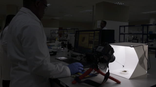 scenes from lucan labs lesotho during research on medical cannabis maseru lesotho on thursday november 14 2019 - homeopathic medicine stock videos & royalty-free footage