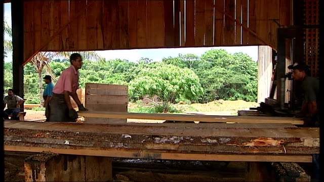 vídeos y material grabado en eventos de stock de scenes in a brazilian sawmill and logging in the rainforest brazil the amazon basin amazonas ext various good shots of workers in sawmill chopping... - almacén de madera