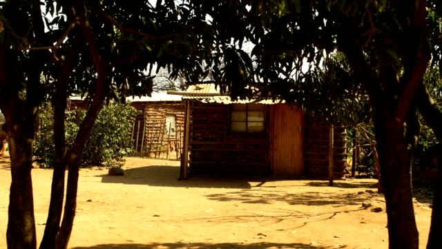 scenes of daily life in rural village/ south africa - scena rurale video stock e b–roll