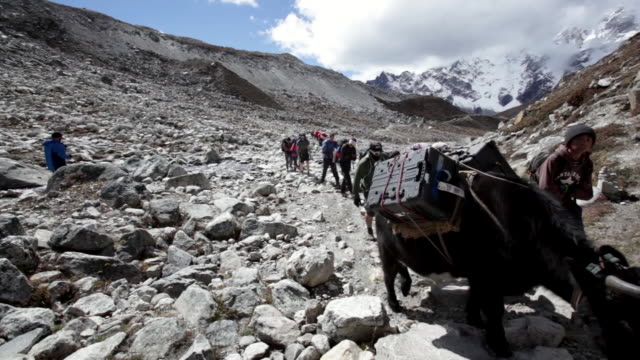scenes of kathmandu and mount everest, nepal - mount everest stock-videos und b-roll-filmmaterial