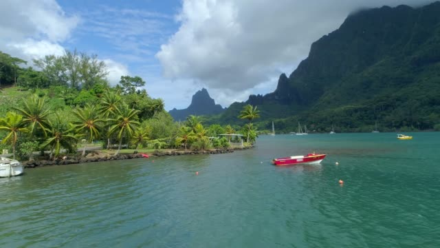 scenic aerial drone view of a lagoon and boats in moorea, french polynesia. - insel moorea stock-videos und b-roll-filmmaterial