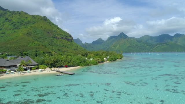 scenic aerial drone view of a luxury resort hotel overwater bungalows on a tropical island in moorea. - moorea stock videos & royalty-free footage