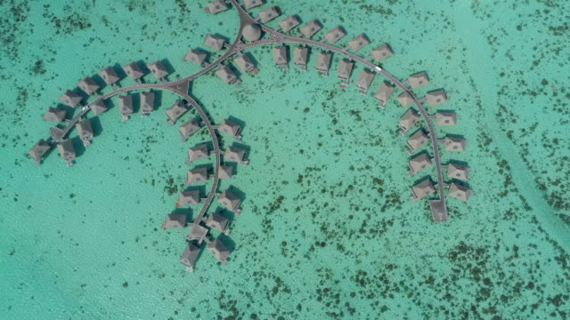 vídeos y material grabado en eventos de stock de scenic aerial drone view of a luxury resort hotel overwater bungalows on a tropical island in moorea. - territorios franceses de ultramar