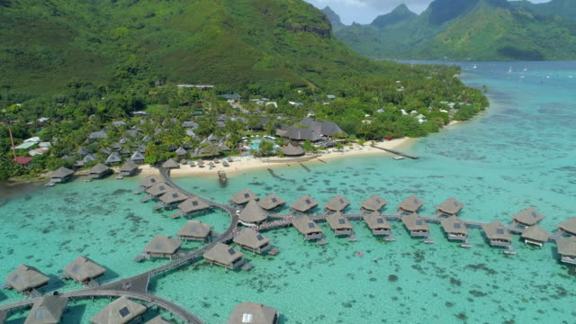 scenic aerial drone view of a luxury resort hotel overwater bungalows on a tropical island in moorea. - insel moorea stock-videos und b-roll-filmmaterial