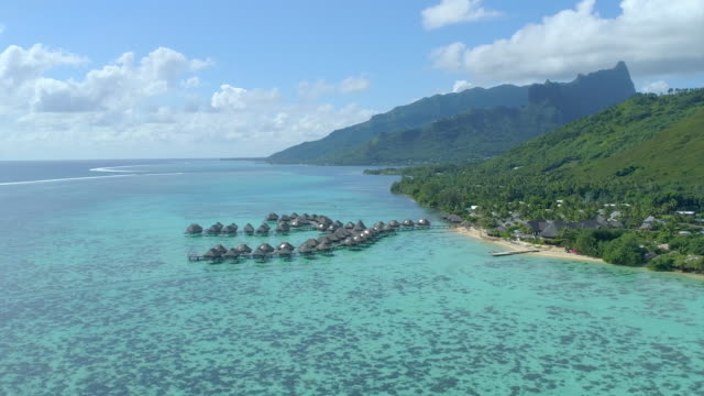 scenic aerial drone view of a luxury resort hotel overwater bungalows on a tropical island in moorea. - フランス海外領点の映像素材/bロール