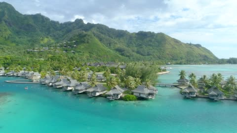 scenic aerial drone view of a luxury resort tropical island hotel in moorea, french polynesia. - french polynesia stock videos & royalty-free footage