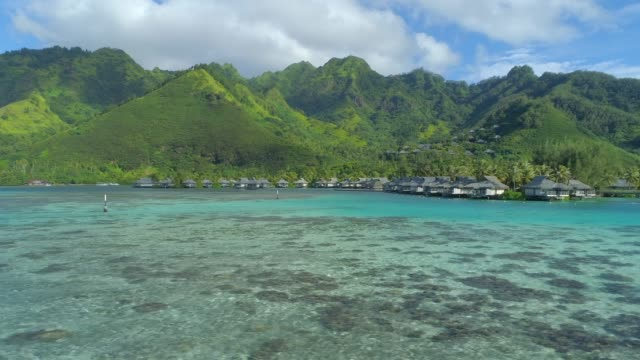 scenic aerial drone view of a luxury resort tropical island hotel in moorea, french polynesia. - moorea stock videos & royalty-free footage