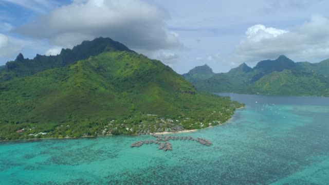 scenic aerial drone view of overwater bungalows at a luxury resort tropical island hotel in moorea, french polynesia. - moorea stock videos and b-roll footage