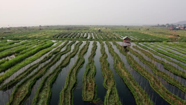 Scenic aerial view of floating gardens  on Inle Lake