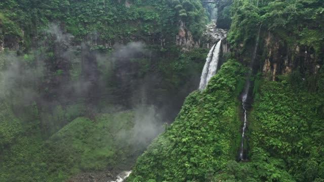 vidéos et rushes de vue aérienne scénique de la chute d'eau de madakaripura sur java - végétation verdoyante