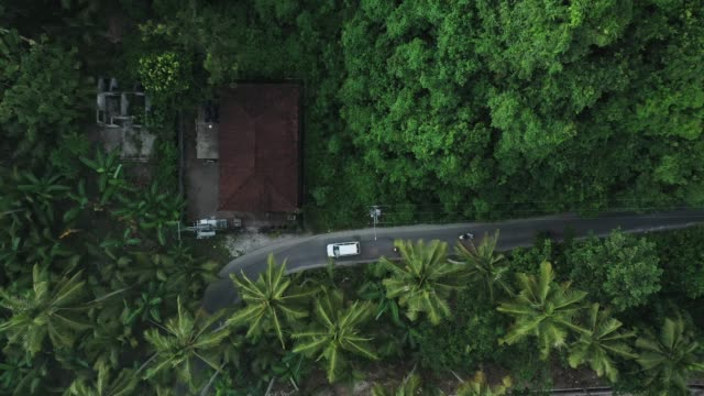 scenic aerial view of road in the jungles on nusa penida - famous place stock videos & royalty-free footage