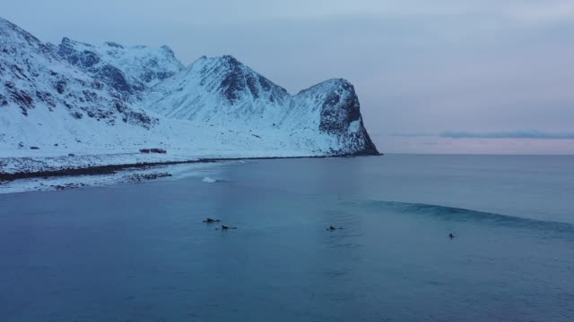 scenic  aerial view of surfers on seaside on lofoten islands - nordland county stock videos & royalty-free footage