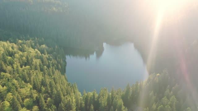 vídeos de stock e filmes b-roll de scenic aerial view of synevir lake in mountains - pinhal