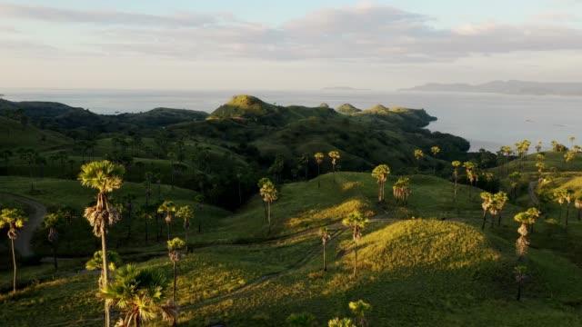 フロレス島の丘の風光明媚な空中ビュー - 世界遺産点の映像素材/bロール