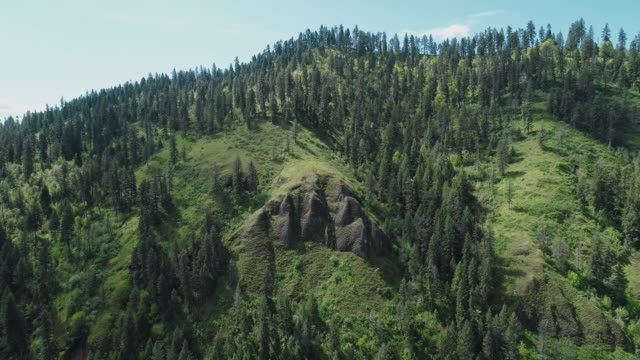 scenic aerial view of the mountains in the rattlesnake wilderness area, missoula county, montana, in the sunny spring day. drone video with the backward camera motion. - montana western usa stock videos & royalty-free footage