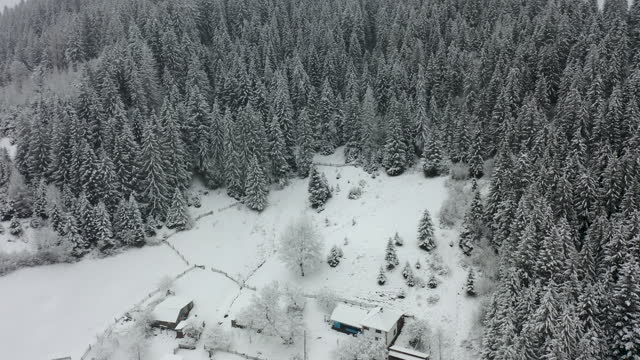 scenic aerial view of the small village in the pine tree mountain forest during snowfall and blizzard - pine woodland stock videos & royalty-free footage