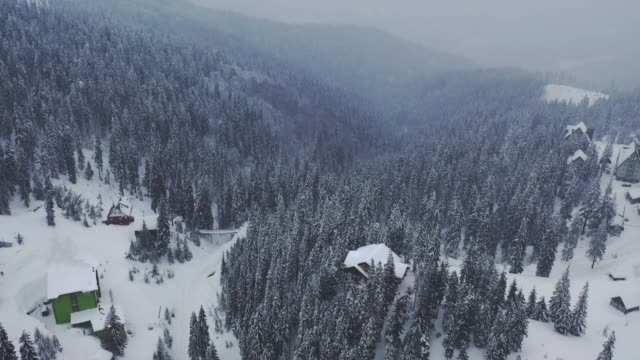 scenic aerial view of village in carpathian mountains in winter - poland stock videos & royalty-free footage