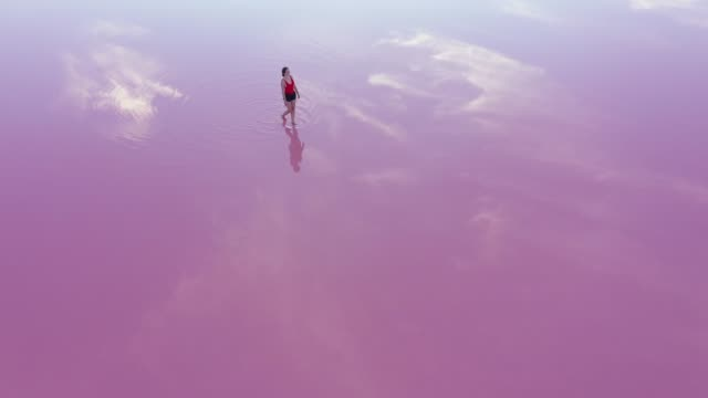 scenic aerial view of woman walking  on pink salt lake in ukraine - scenics stock videos & royalty-free footage