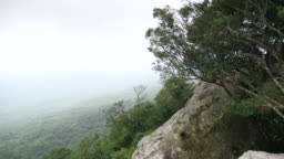 Scenic Cliff View in Tropical Forest