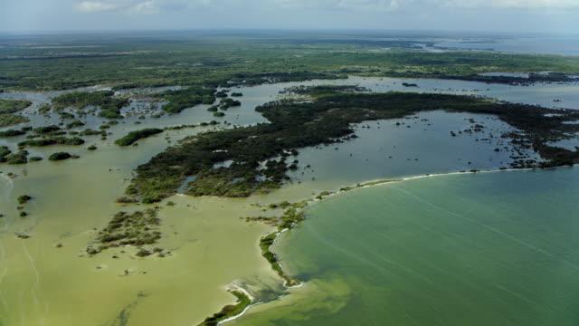 scenic coastal wetlands in yucatan - yucatan peninsula stock videos and b-roll footage