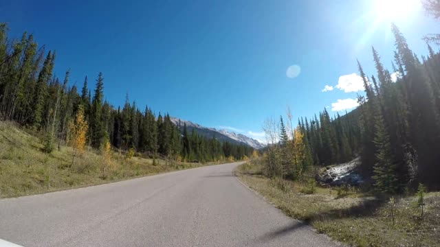 scenic drive pov - car point of view stock videos & royalty-free footage