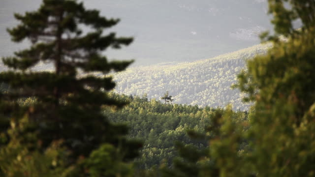scenic forest landscape in maine, wide - wide stock videos & royalty-free footage