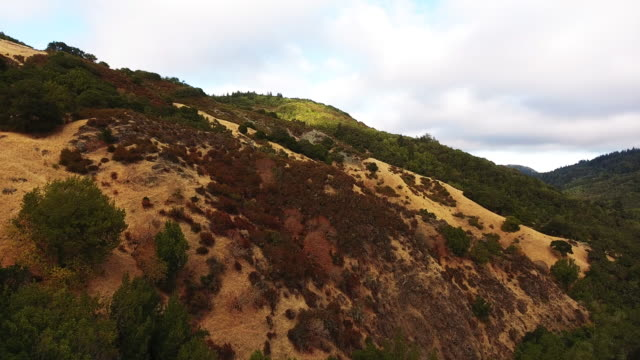 Scenic hillside in Cascade Canyon, aerial