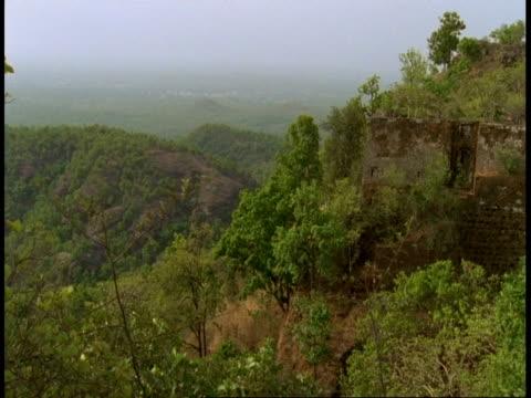 wa scenic jungle, bandhavgarh national park, india - national icon stock videos & royalty-free footage