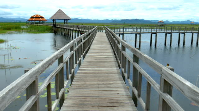 scenic landscape view of wooden bridge on the tranquil lake - pavilion video stock e b–roll