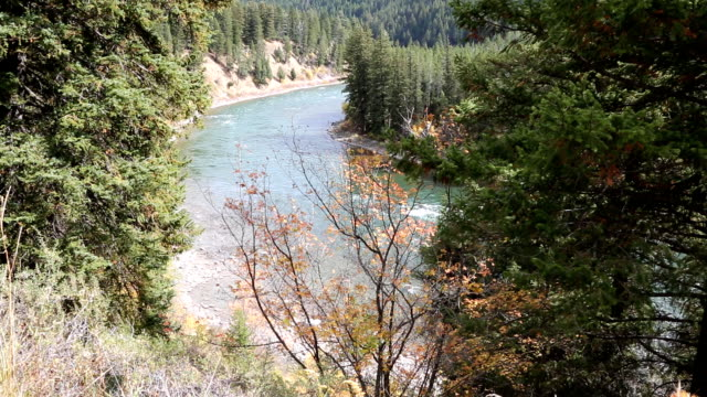 scenic mountain river - snake river stock videos and b-roll footage