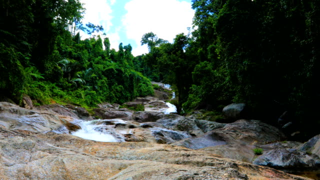 scenic nature of beautiful waterfall in wild jungle forest environment at thailand, 4k. - rainforest stock videos & royalty-free footage