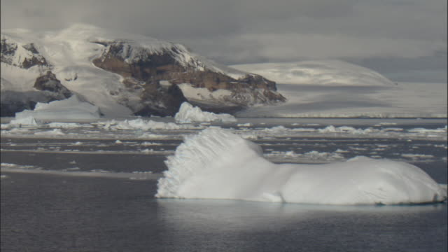 scenic, northeast antarctic peninsula with icebergs and sea ice - antarctica melting stock videos & royalty-free footage