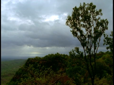 wa scenic over jungle, bandhavgarh national park, india - national icon stock videos & royalty-free footage